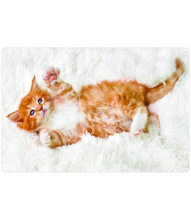 PLACEMATS - NON-SKID - 30x45CM - 12PC. - MAINE COON