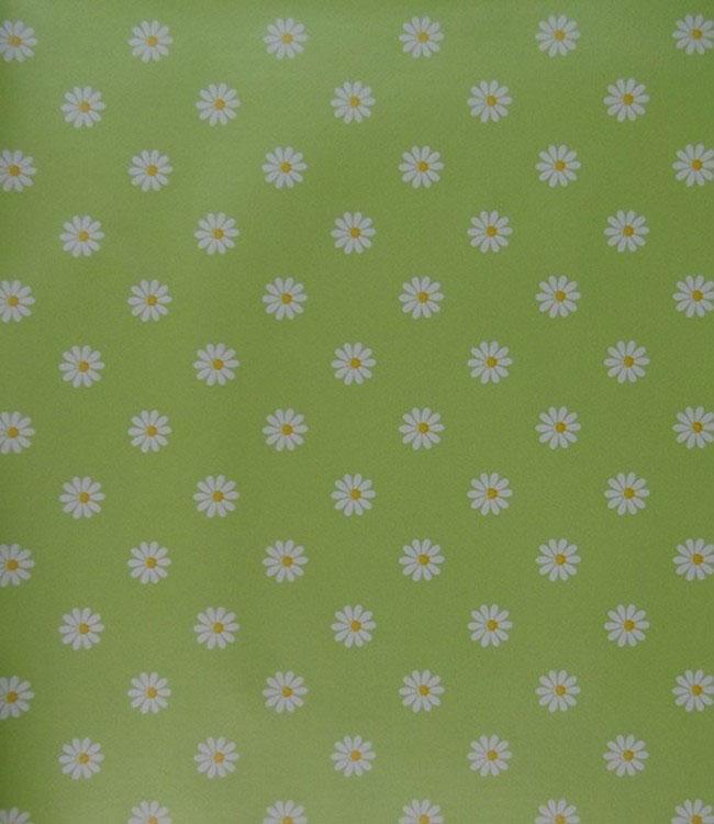 SALE & PEPE - 160 cm - 21 m. - SMALL DAISY LIME